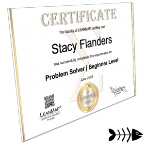 Problem-Solving Certificate 1 Beginner