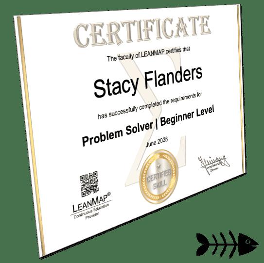 Problem-Solving Certificate 1 Beginner