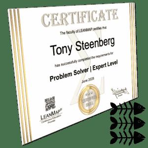 Problem-Solving Certificate 3 Expert