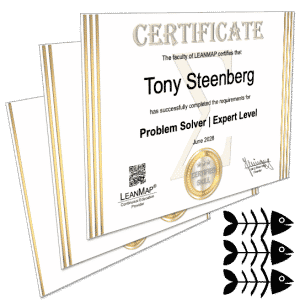 Problem Solving Certification Courses