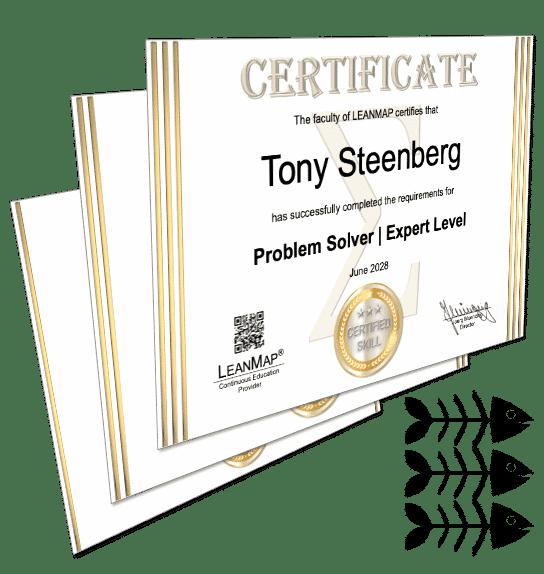 Problem Solving Certification Courses